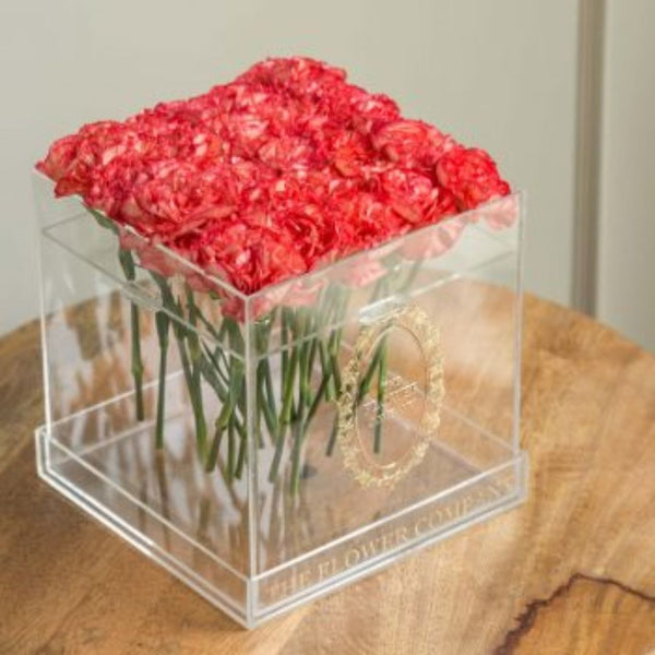 Carnations - Crystal Cubo