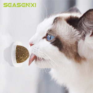 Natural Catnip Toys For Cats Edible Treating Cleaning Teeth