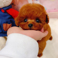 Load image into Gallery viewer, Realistic Teddy Dog Lucky