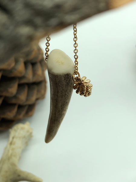 Antler Tip Necklace