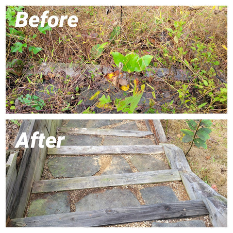 Removed weeds from steps