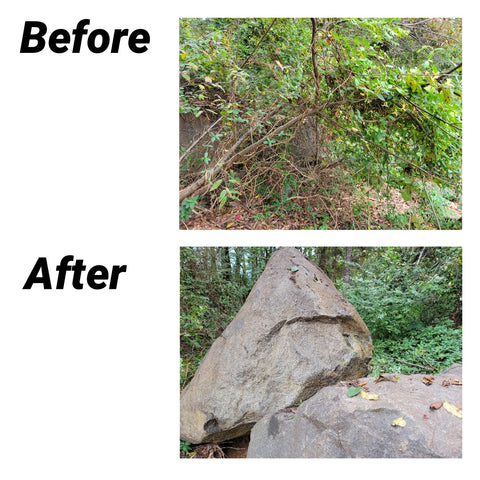 Removed honeysuckle from trees & stone