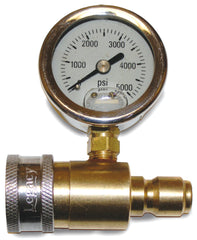 GAUGE ASSY, COLD WATER, 0-5000PSI