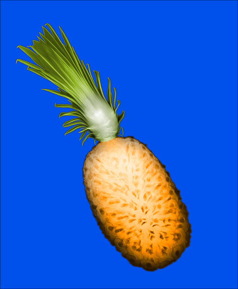 Pineapple (X-Ray)