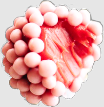 Load image into Gallery viewer, Strawberry brigadeiro