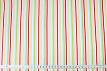 Load image into Gallery viewer, Fabric by the Yard, Primary Stripes, Bright Stripes: Play Day Stripe