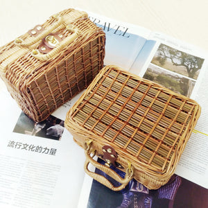 Handmade Mans Cane Small Literature and Art Vintage Tote Straw Bag