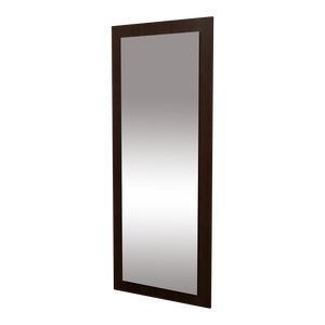 Frost American-Made Wall Mounted Mirror Panel