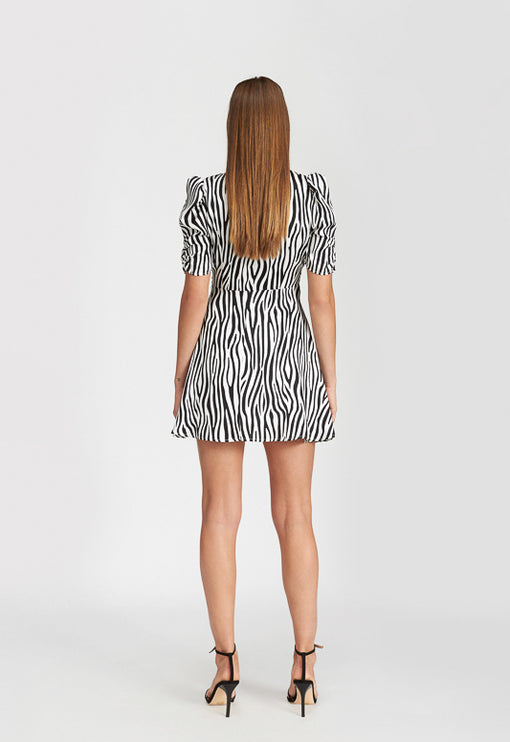 Ask Anything Mini Dress - ZEBRA