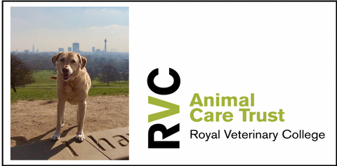 Royal Veterinary College Animal Care Trust - Charity