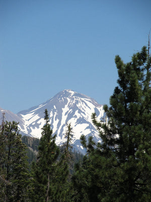 Mt. Shasta Kit