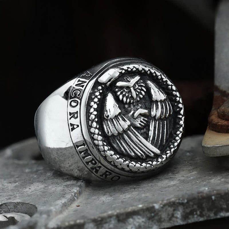 Owl And Ouroboros Stainless Steel Ring