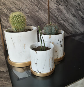 Golden Ceramic Marble Plant /Flower Pot With Tray - Home Hunt