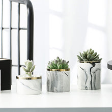 Load image into Gallery viewer, Marble Ceramic Pot Plant with Stand - Home Hunt