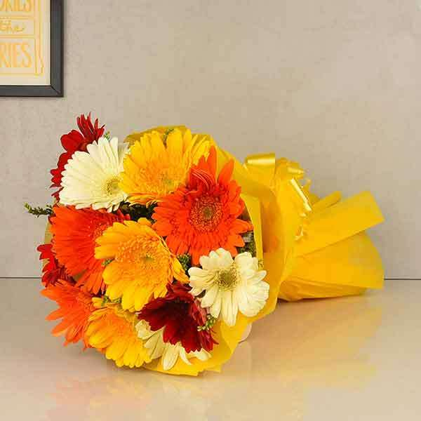 Mixed Gerberas Collection (12 stems)