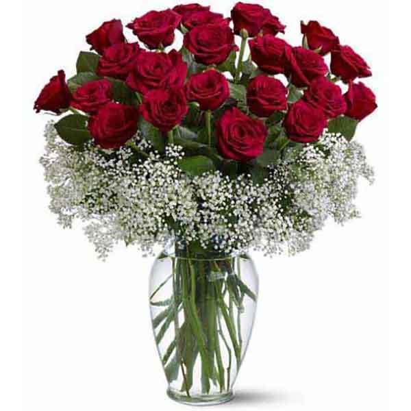 24 Red Rose In Vase