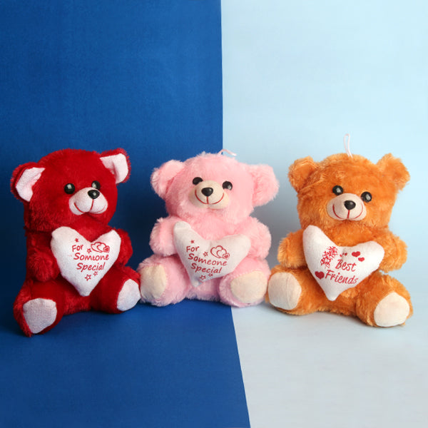 Cuddle n Love Bear Combo