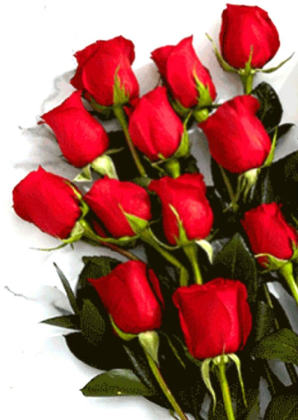 Red Love Rose Bouquet (10 Stems)