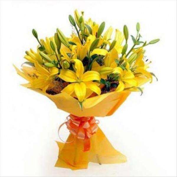 6 Asiatic Yellow Lilies