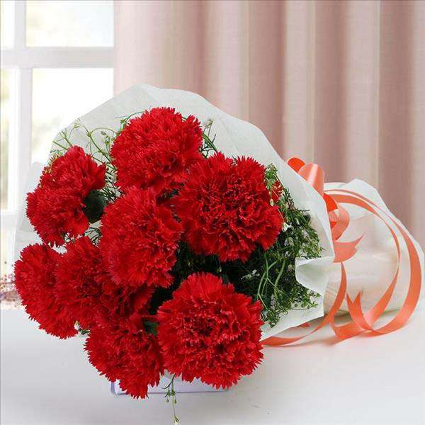 Red Hue Carnations (10 stems)