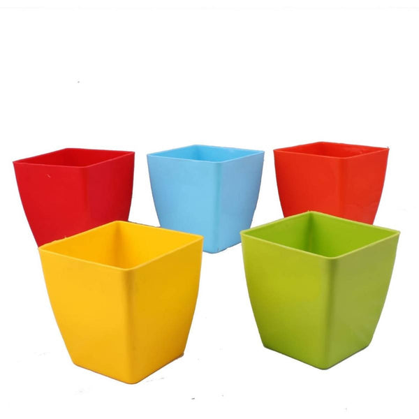 5 Inches Plastic Square Pots