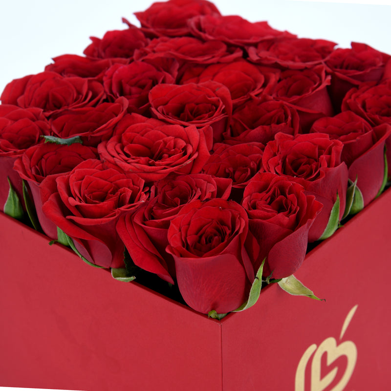 20 Red Roses in the Box