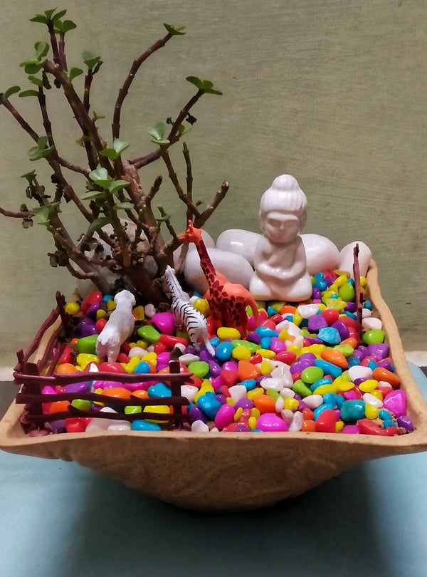 Meditating Buddha (Mini Garden)
