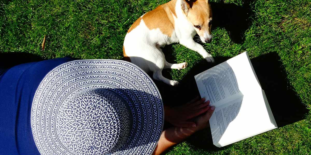 Lovely smaller dog and pet owner reading a pet novel book on beautiful day