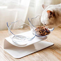 Pet cat eating food from double feeding bowls with raised stand pet food and water bowl