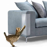 Striped house cat scratching on the furniture protected from scratch
