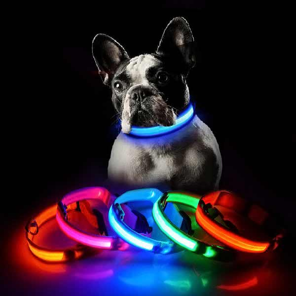 Dog USB charging LED collar anti-lost for dogs puppies dog supplies pet products