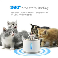 Pet cats drinking water from fountain water bowl for pets cat dog puppy kitten