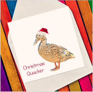 Christmas Quacker - Eco Friendly Card