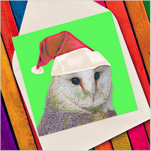 Character owl - Eco Friendly Card