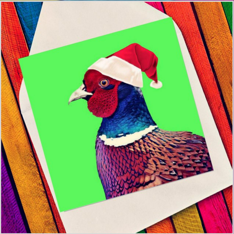 Character pheasant - Eco Friendly Card