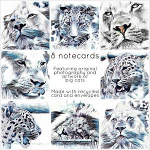Big cats collection - Eco Friendly Card