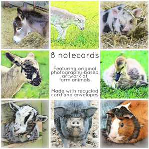 Farm animals collection - Eco Friendly Card