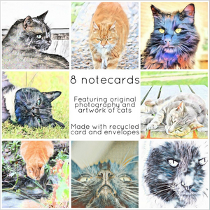 Cats collection - Eco Friendly Card