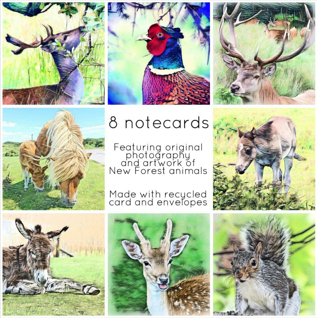 New Forest wildlife collection - Eco Friendly Card