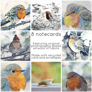 Robins collection - Eco Friendly Card