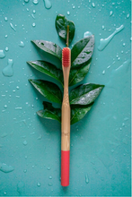 Load image into Gallery viewer, Red Bamboo Toothbrush