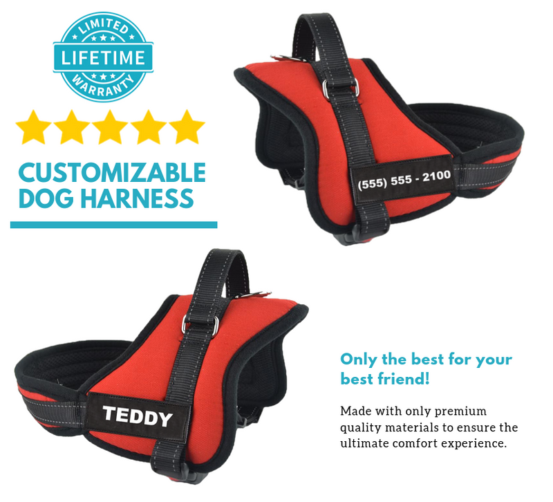 Personalized HappyPaws™ NO-PULL Harness