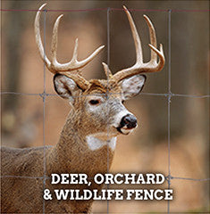Deer, Orchard & Wildlife Fence