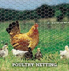 Poultry Netting & Chicken Wire
