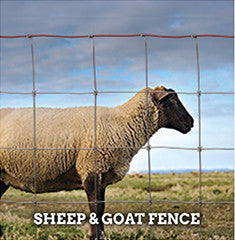 Sheep & Goat Fence