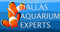 Custom Aquarium Design and Aquarium Service by Dallas Aquarium Experts