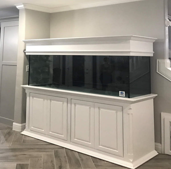 Online Aquarium Sales and Aquarium Maintenance Service