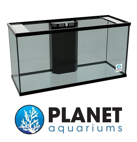 Trimmed Glass Aquarium Tanks aquarium service dallas aquarium experts
