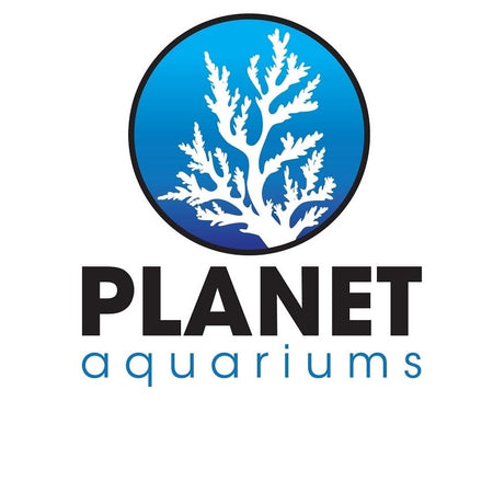 Dallas Aquarium Experts Online - Aquarium Store specializing in High Quality Custom Aquariums, Trimless Aquariums, Aquarium Stands, Cabinets, and Canopies. We offer high quality glass aquariums American Made Aquariums