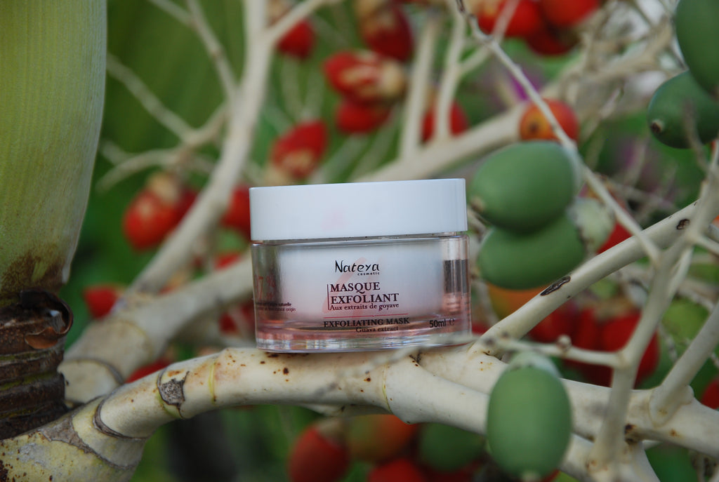 Le Masque Exfoliant Guayashine